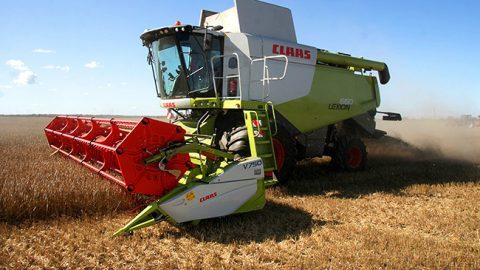 Уборка зерновых с полей в Ида-Вирумаа (Пеэтер ЛИЛЛЕВЯЛИ)