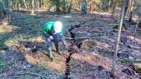 Маркшейдеры тщательно обследовали образовавшиеся в почве трещины - местами довольно широкие и глубокие.