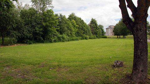 Вдобавок к этим деревьям вблизи больницы в Ахтме появится новый парк 100 дубов.