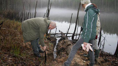 Не один год ученые измеряли уровень воды в водоемах Куртна только с помощью измерительной рейки и ленты. На этом фотоснимке происходит замер в Курадиярв (Пеэтер ЛИЛЛЕВЯЛИ/АРХИВ)