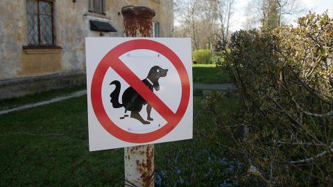 Сложно запретить собакам не валить кучи по дворам и улицам, проще прибирать за ними, если хозяин - ответственный гражданин. (Фото: Пеэтер ЛИЛЛЕВЯЛИ/АРХИВ)