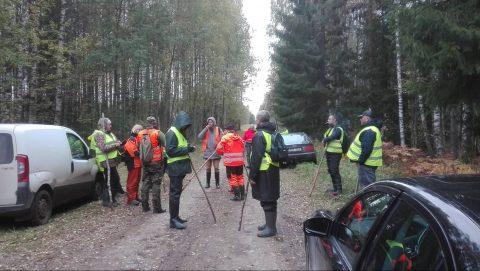 Десятки добровольцев прочесывают расположенное около Агусалу болото Хейнасоо, чтобы найти заблудившегося в лесу около недели назад 77-летнего Ивана.  (Фото: Ааре РЮЙТЕЛЬ)