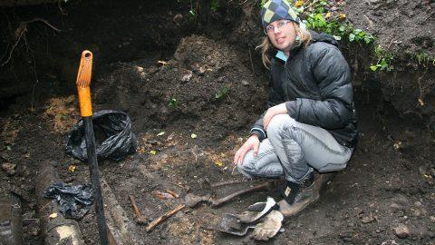 Ничего экстраординарного в находке нет, просто скелеты без погребального инвентаря. За год в ходе строительных работ обнаруживают сотни скелетов, и археологи и остеологи находятся в состоянии постоянной готовности, как спасатели. (Фото: Пеэтер ЛИЛЛЕВЯЛИ)
